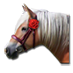 Valentinsday2014 horse.png
