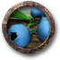 Job blueberries.png