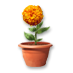 Low flower container.png